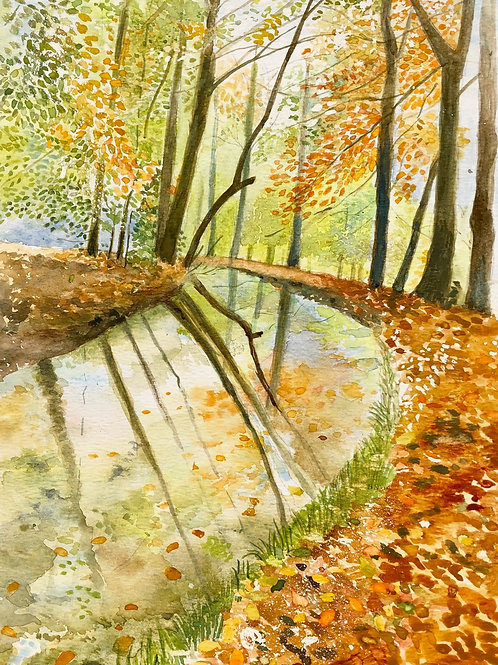 Autumn by the Brecon Beacons canal