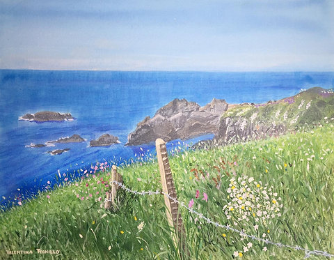 Coast path in Pembrokeshire with the blue ocean, rocks and sky in background and flowers, grass and a fence on the foreground