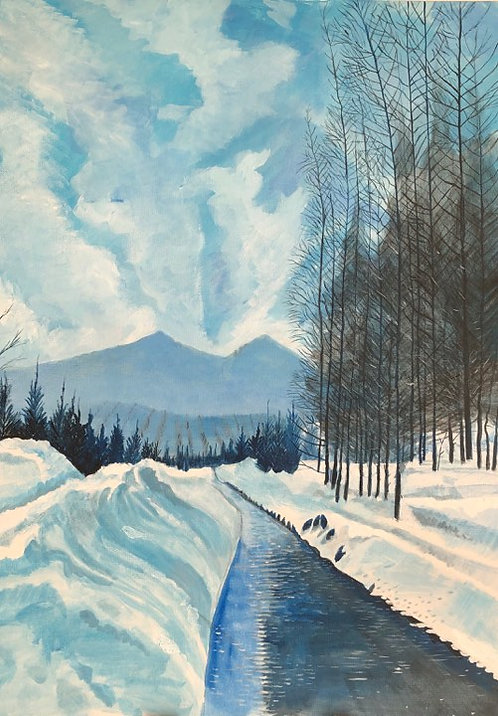 Snowy mountain scene in Livigno, Italy with pine trees and a little river