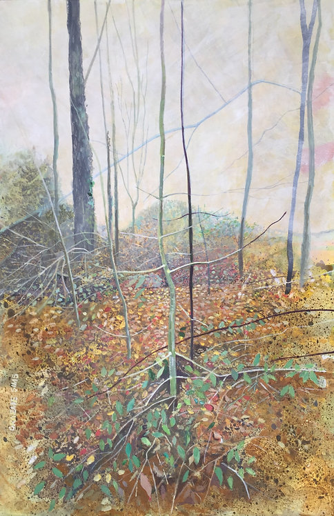 Wild piece of wood with autumnal leaves on the ground, bare trees and a nice silence