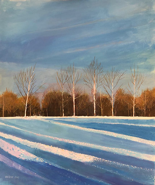 Snowy Italian countryside with bare trees in background and colourful and shadowed snow in front