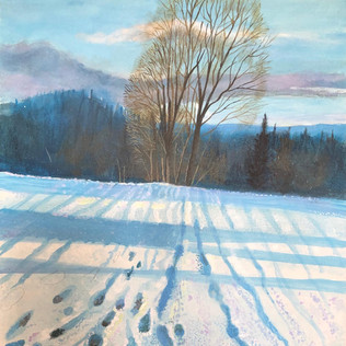 The silence of snow