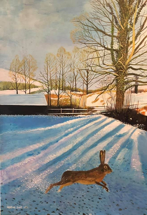 Snowy Welsh countryside with a hare running through and dusk shadows on the snow. There is a tree at the edge of the field.