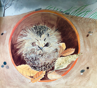 Hedgehog zzzing in a drain pipe