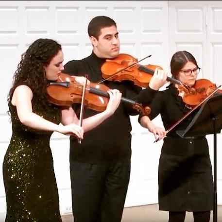 Brandenburg Concerto no. 6