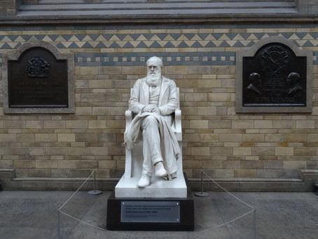 Ditching Darwin