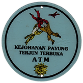 ATM 1991 (1).png