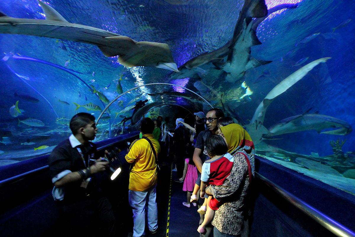 Underwater_tunnel_in_Aquaria_KLCC.jpg