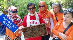 Bee Farm In Thailand