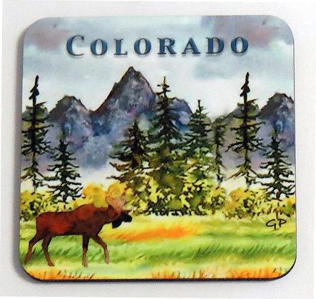Moose Meadow Coaster - Colorado