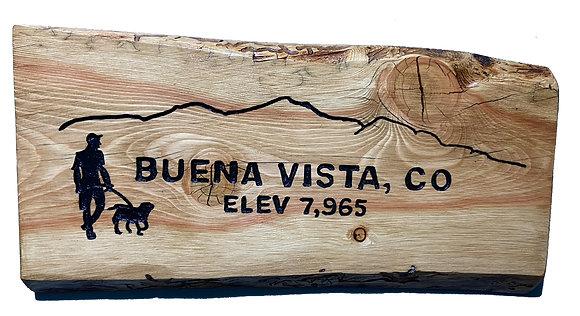 Buena Vista, Mountains and Dog Walker