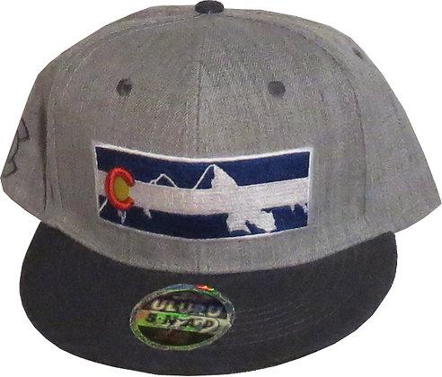 CO Flag & Mountains