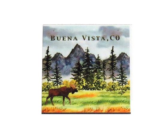 Moose Meadow Buena Vista, CO Magnet