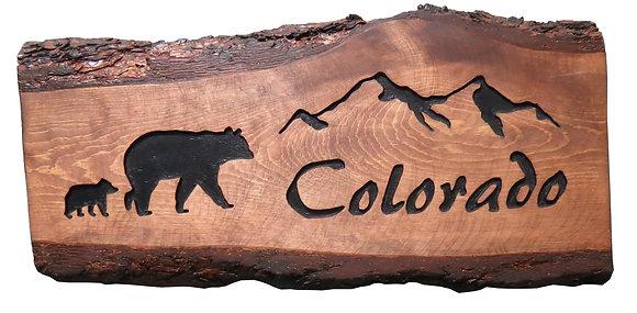 Colorado Mountains & Bear