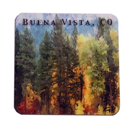 Buena Vista, CO Aspen Forest Coaster