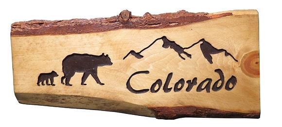 Colorado Mountains and Bear