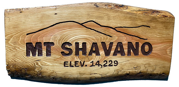 Mt Shavano and Mountains