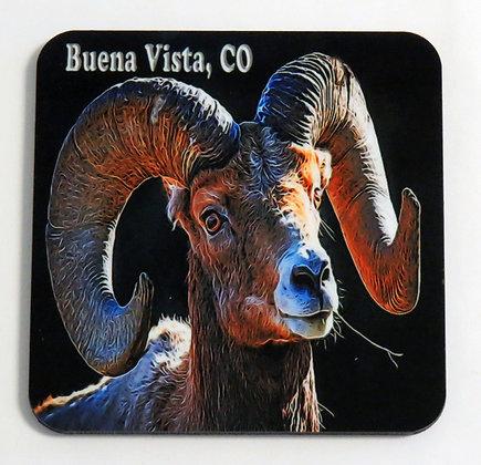 Big Horn Sheep Coaster - Buena Vista, CO