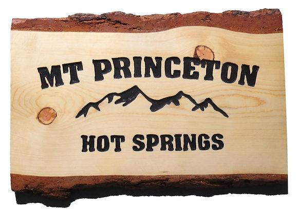 Mt. Princeton Hot Springs