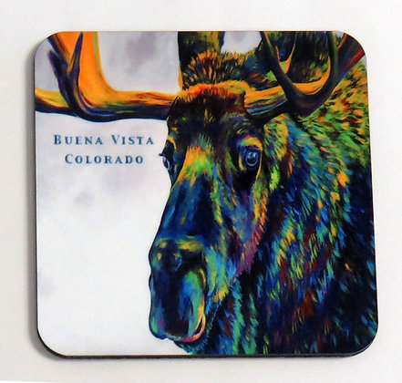Moose Coaster - Buena Vista, Colorado