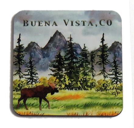 Moose Meadow Coaster - Buena Vista, CO