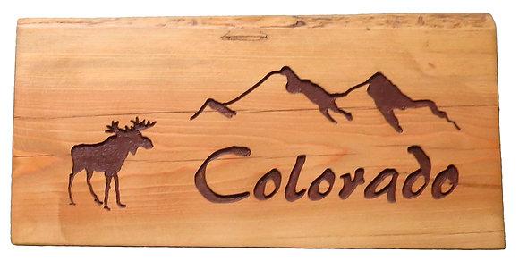 Colorado Mountains and Moose