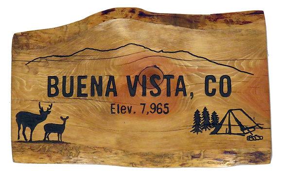 Buena Vista Mountains, Deer & Tent