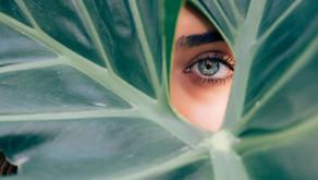 O olhar apreciativo é arte essencial