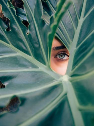 Peeping Through a Leaf