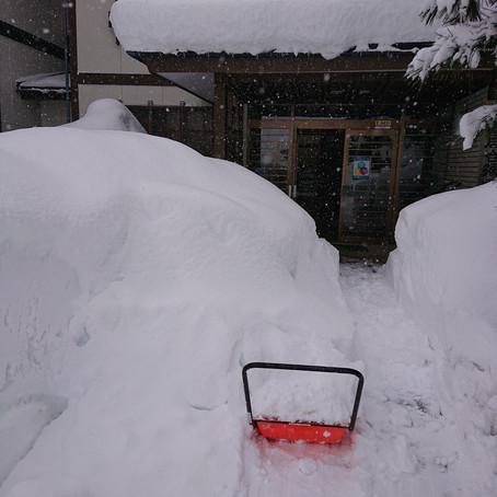 ◆自然を師匠に稽古~雪かき