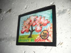 Cherry Blossom 1HARD.jpg