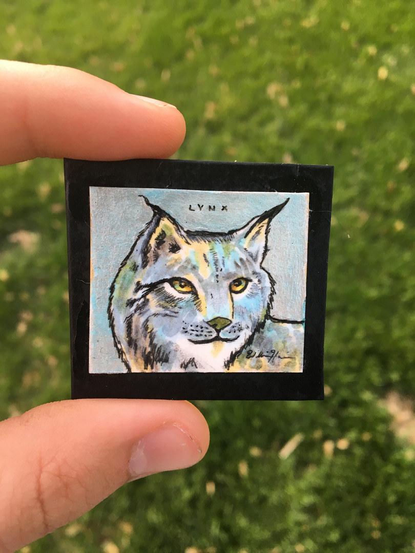 Miniature Lynx Art has been found