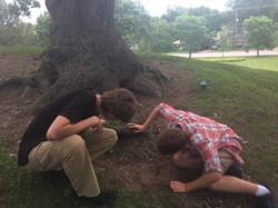 Art Hidden Under a Tree Root