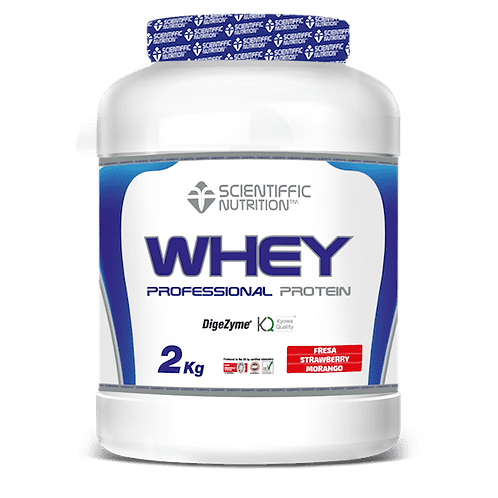 PROFESSIONAL WHEY PROTEIN