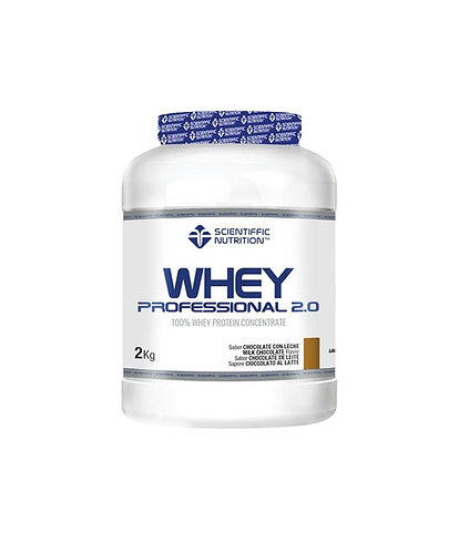 PROFESSIONAL WHEY 2.0 PROTEIN