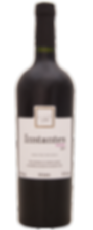 Instanes Malbec 2017.png