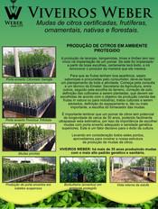 Newsletter Viveiros - 14.jpg