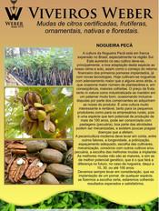 Newsletter Viveiros - 16.jpg