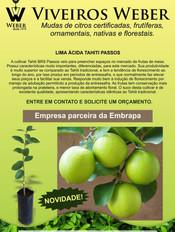 Newsletter Viveiros - 21.jpg