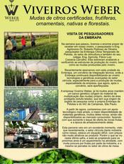 Newsletter Viveiros - 12.jpg