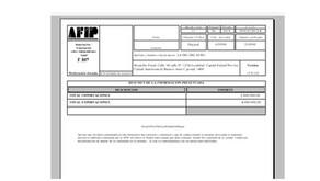 Paso a Paso Formulario 867 - cierres anteriores a diciembre 2018 (Impos y Expos con independientes)