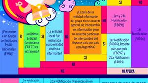TP Ilustrado - Entrega 6 - RG 4130-E: Reporte País por País en Argentina