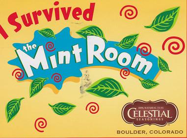 I Survived the Mint Room misadventures