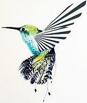 ara+rose+hummingbird.jpeg
