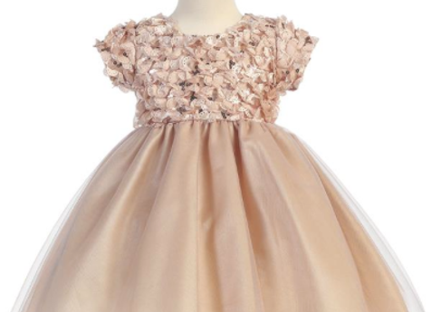 Champagne Ribbon tulle - C978 in stock