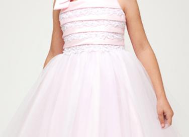 Enchanted Pink & Lace Dress