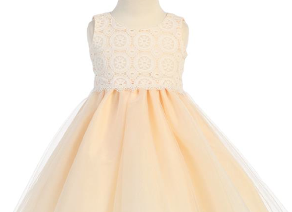 Lace & tulle- Peach