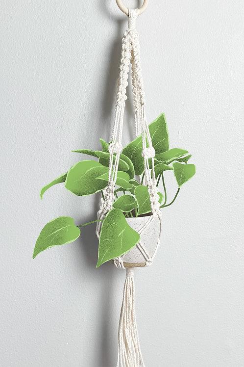 Macrame Hanging Planter 2