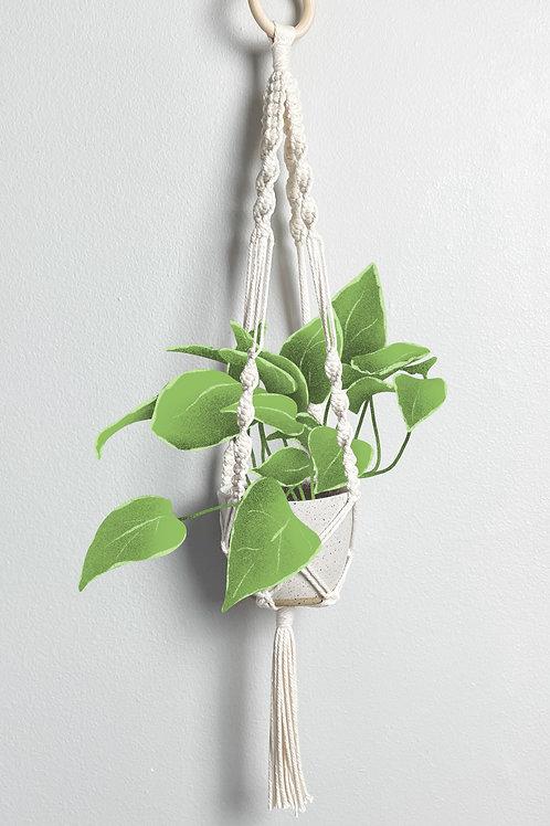 Macrame Hanging Planter 1