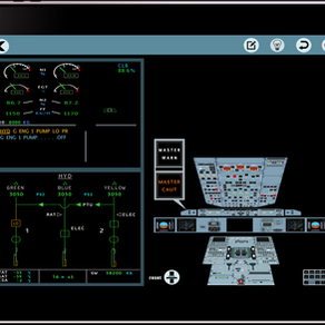 Airbus A320 series ECAM Pilot trainer.
